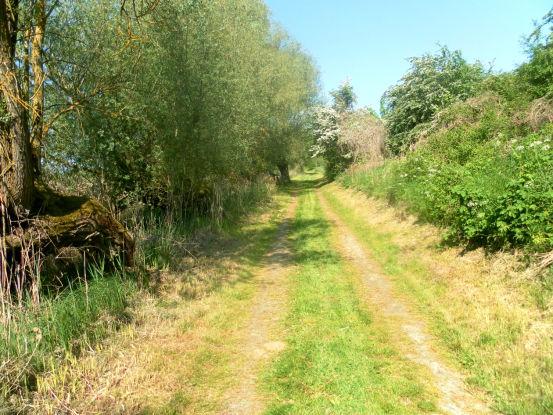 Wege in Grenz (Uckermark)