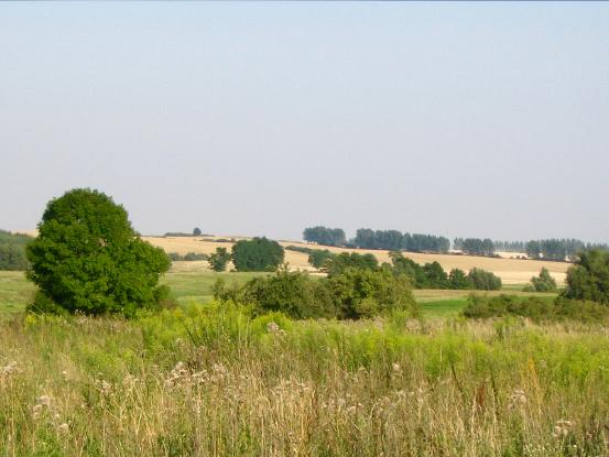 Landschaft in Grenz