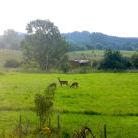 Grenz bei Prenzlau in der Uckermark